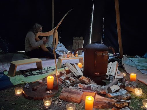 live harp en hang muziek stilteweekend in de natuur