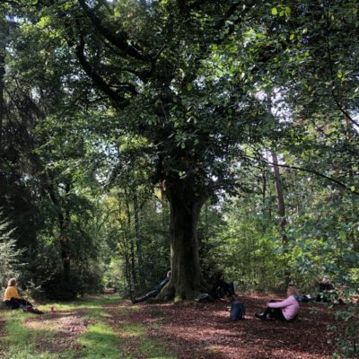 stilte retraite in de natuur