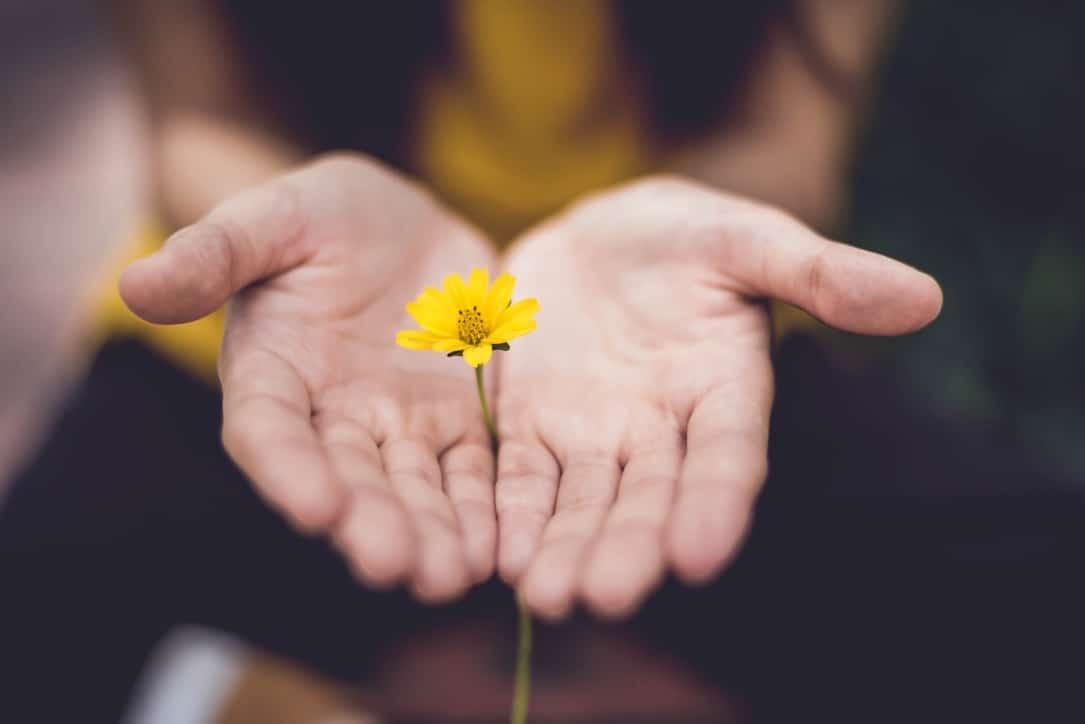proefmaand meditatie