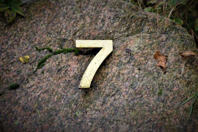 de 7 oppeppers van meer zin in je leven