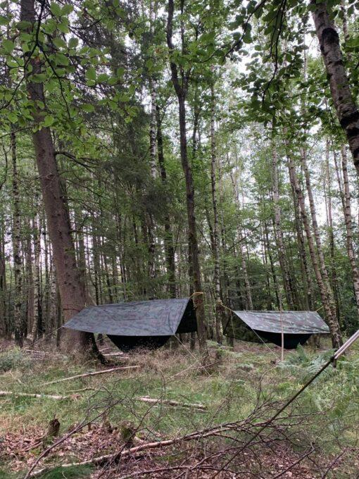 natuur retraite zijn vol zin Ardennen