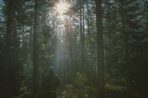 stilte retraite in de natuur zijn vol zin